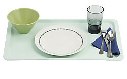 4187039 | Tray turquoise, fiberglas polyester Metos 530x325 (GN 1/1) |